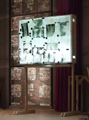 The artist's x-rays on display. German Pavilion, © Roman Mensing, artdoc.de