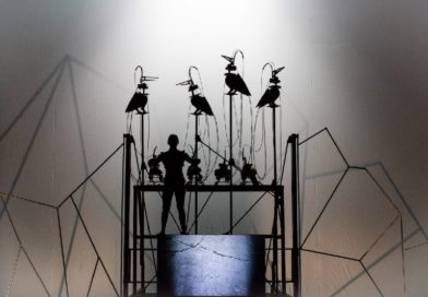 Italian Theatre Today: Not a System, and so Many Transformations