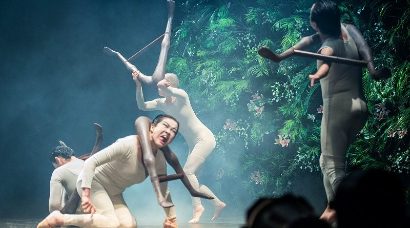 Countering Ageism and Eugenics in Theatre