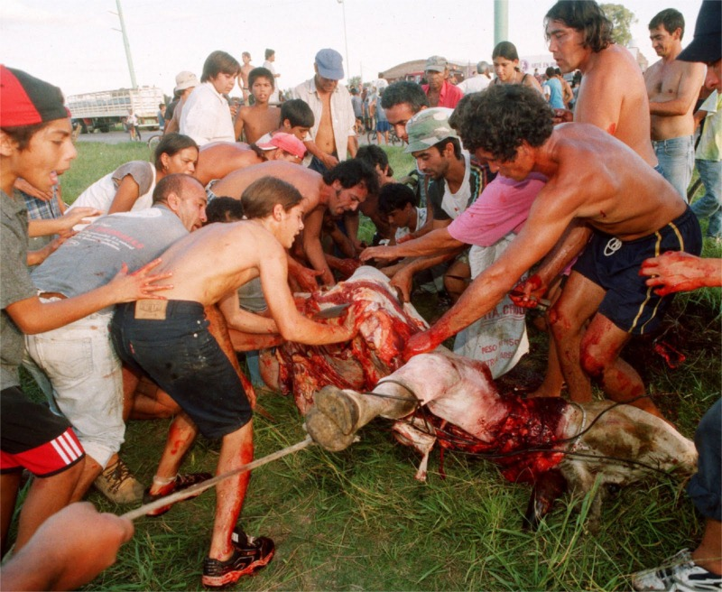 A scene from a mob of about six hundred residents of Las Flores, who slaughtered the cows carried by the overturned truck.